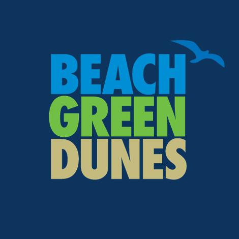Beach Green Dunes
